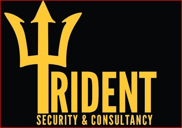 Trident security consultancy services