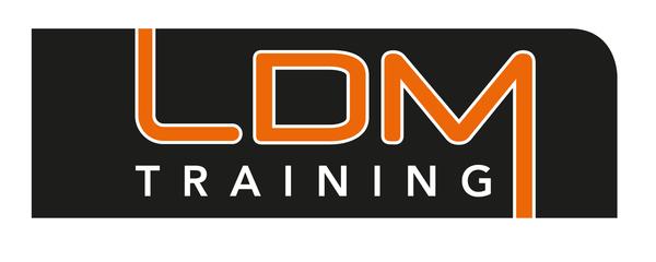 LDM Training